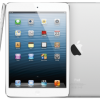iPad Mini Supply Problem – White Colored Model Immediately Disappeared in the Market