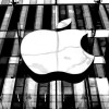 Apple's Stock Prices Increased by more Than 8% After Observing 6 Months Low Price